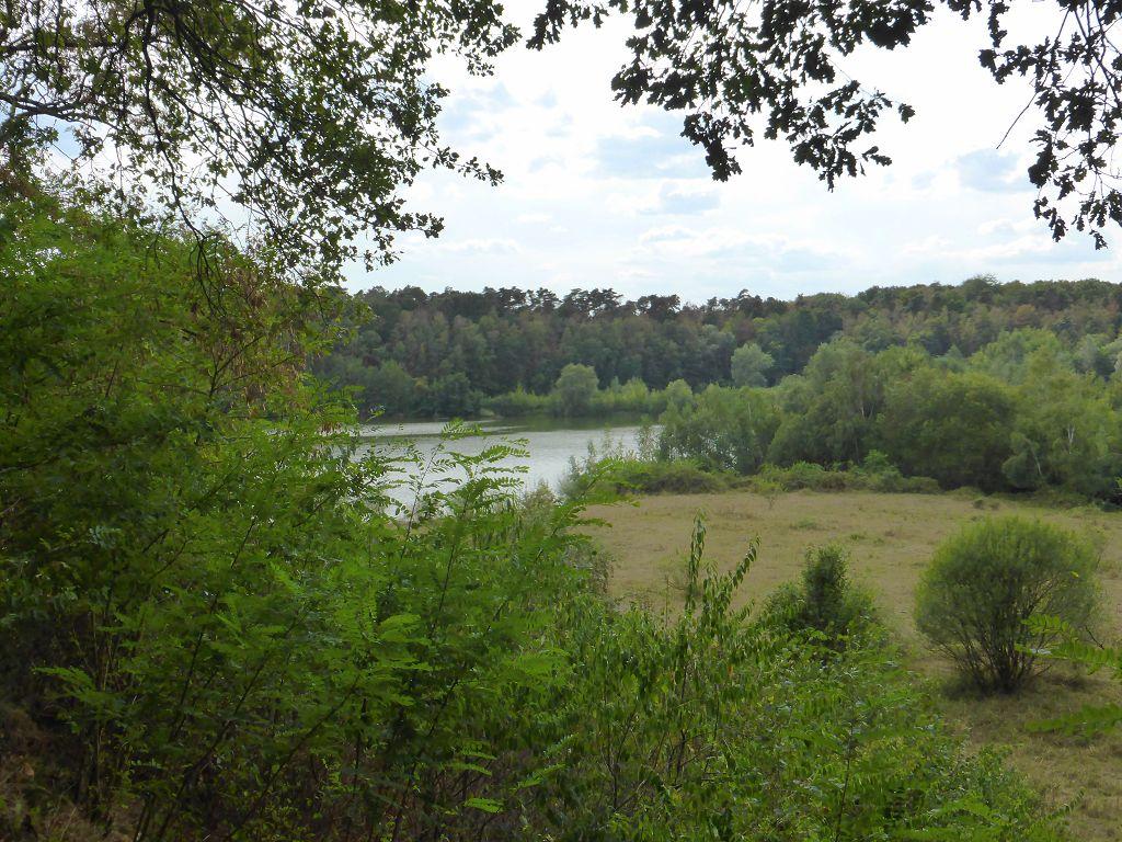 Kerpen - 24.08.2018 Die Dünnwalder Seenplatte mit Maria Schaffrath ...